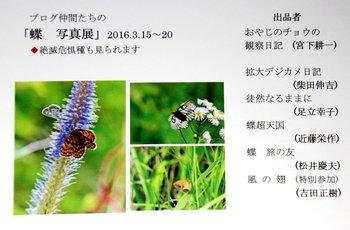 s-IMG_9583tenzi.jpg